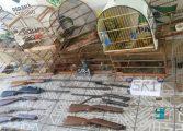 Serviço reservado da PM localiza armas, munições e pássaros silvestres