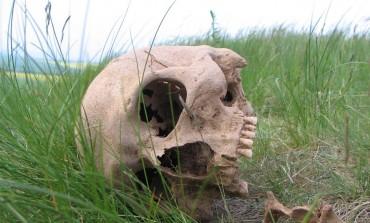 Homem passeia em cemitério, é atingido por crânio e culpa o 'coisa ruim'