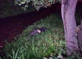 Rapaz é morto com vários tiros em Campo Largo