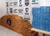 Tráfico de drogas está em alta. Apreensão dispara no Paraná