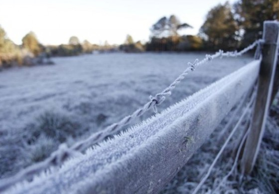 Onda de frio se aproxima do Paraná; no fim da semana que vem pode gear