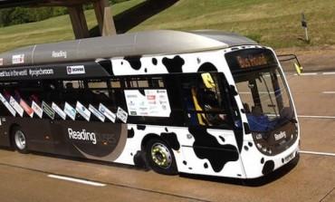 Empresa cria ônibus movido a cocô de vaca