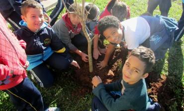 Semana do Meio Ambiente contou com ações em parques e escolas da cidade