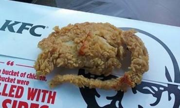 "Cliente de rede de fast food recebe ""rato empanado"" no lugar de frango"