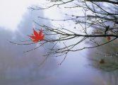 Inverno começou neste domingo e população deve ter cuidados especiais com saúde