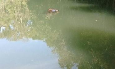 Corpo de homem é encontrado boiando em tanque de pesca em Araucária