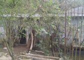 Casal de idosos é torturado e morto dentro de casa na RMC