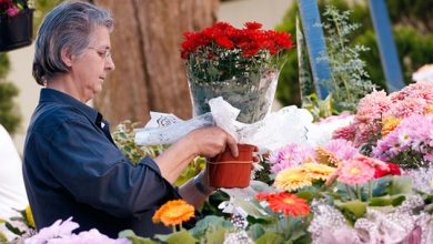 Foto de Feira da Primavera de Araucária começou hoje; confia a programação completa