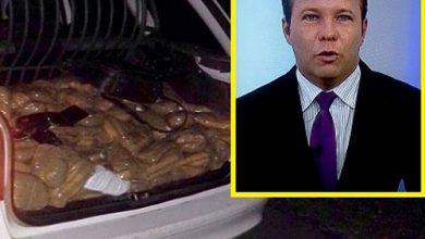Foto de Afiliada da TV Globo demite jornalista preso com droga falsa