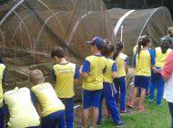 Educação Ambiental retoma visitas orientadas no Horto Municipal e no Parque Cachoeira