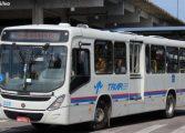 Estudante denuncia tarado que segue ônibus para mostrar partes íntimas a passageiras em Araucária