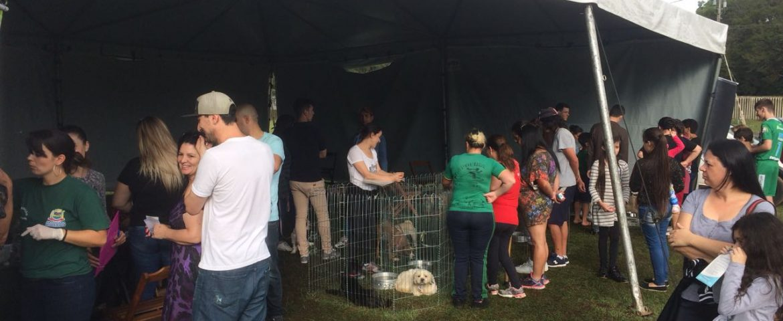 Parque Cachoeira terá feira de adoção de cães no domingo (11)