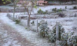 Frio chega com tudo e Araucária e Região tem previsão de apenas 3°C nos próximos dias