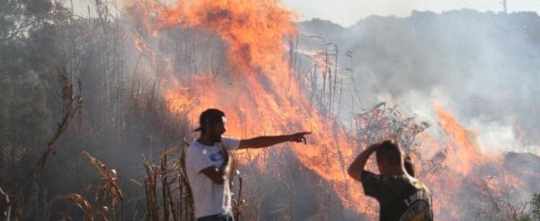 Região registra alta de 21,3% nas ocorrências de incêndio florestal