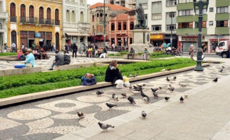 Projeto prevê multa de R$ 200 para quem alimentar pombos em Curitiba