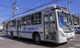 Com reorganização, Araucária terá aumento de mais de 150% em recurso para transporte escolar