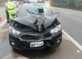 Idoso morre ao ser atropelado por carro na BR-376