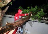Temporal provoca destruição na região metropolitana de Curitiba