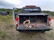 Pelotão Verde apreende artigos de pesca ilegal no Passaúna