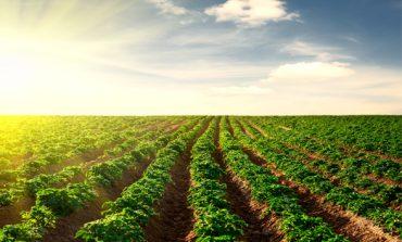 Prefeitura oferece orientação sobre Nota Fiscal Eletrônica ao produtor rural