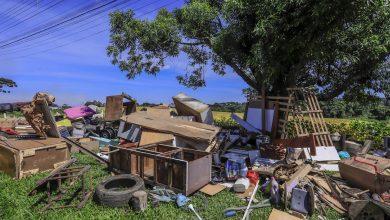 Foto de Programa 'Bairro Limpo' de Araucária recolhe 13 cargas de materiais diversos e 12 toneladas de lixo comum