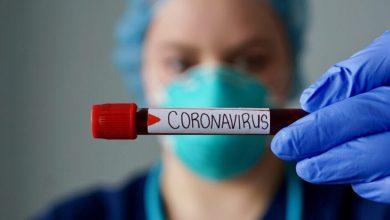 Foto de Covid-19: Brasil tem 55.891 novos casos confirmados nas últimas 24h