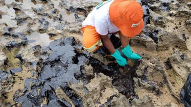 Foto de Fragmentos de óleo ainda poluem praias brasileiras, diz Marinha