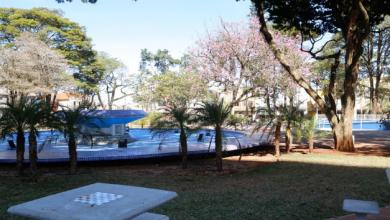 Foto de Governo do Paraná intensifica atendimento aos municípios na pandemia