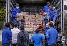 Foto de Assistência Social de Araucária recebe doação de 15 toneladas de alimentos