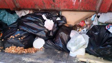 Foto de Vigilância Sanitária interdita dois estabelecimentos em Araucária e descarta mais de 500kg de alimentos