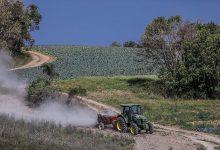 Foto de Agricultura familiar de Araucária recebe 1800 toneladas de calcário para correção do solo