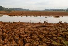 Foto de Previsão do Simepar aponta que estiagem no Paraná pode perdurar até fevereiro de 2021