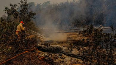Foto de PF e órgãos estaduais apuram causas de incêndios no Pantanal